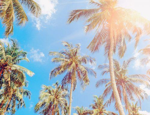 Vacations Matter