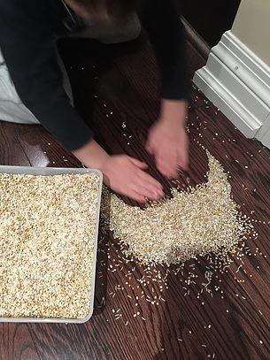 rice-floor