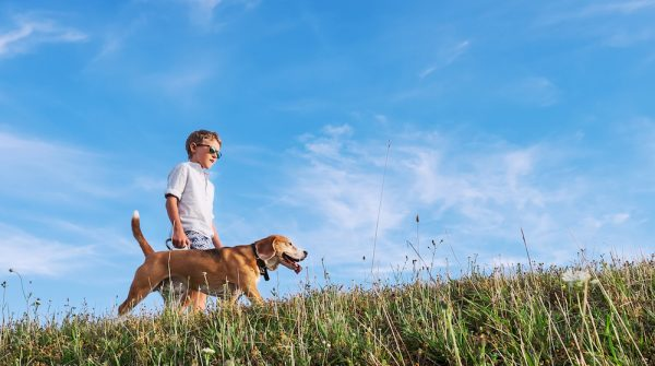 Five Incredible Ways Dogs Help People with Autism